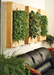 indoor-living-wall-planter-1_img_assist_custom